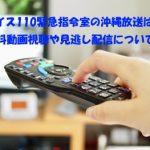 ボイス110緊急指令室の沖縄放送は?無料動画視聴や見逃し配信